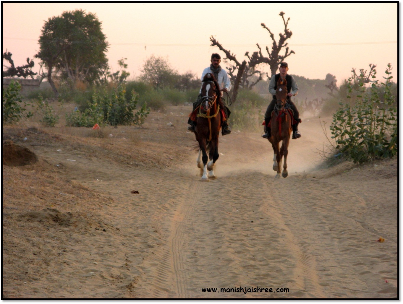 essay on a camel ride Camel ride in chandigarh  so, now you know all 21 things to do at sukhna lake chandigarh and you have also seen all the pictures.