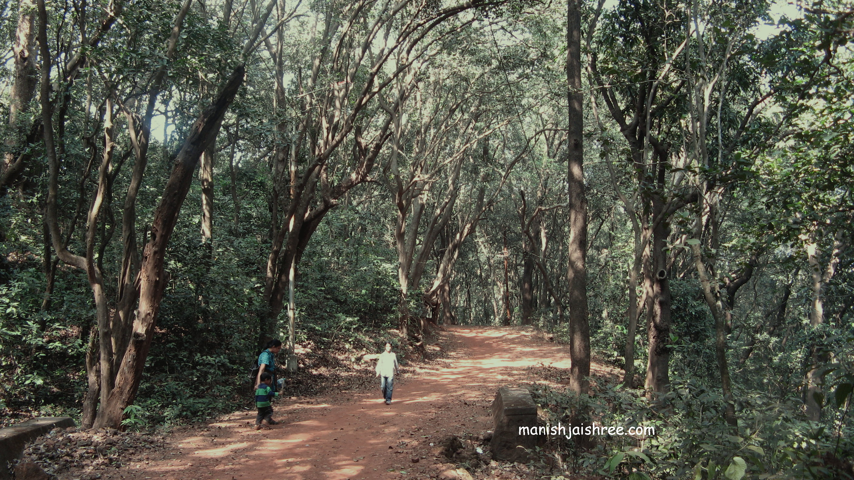 Wandering in the wild Matheran