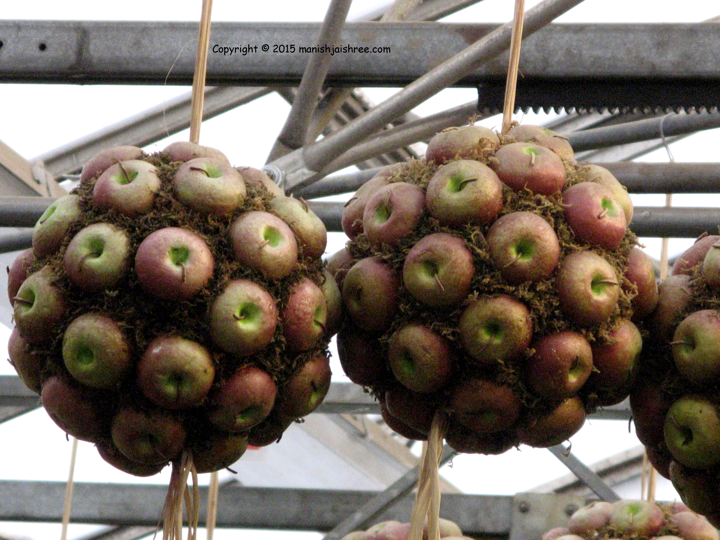 Apple Ball's