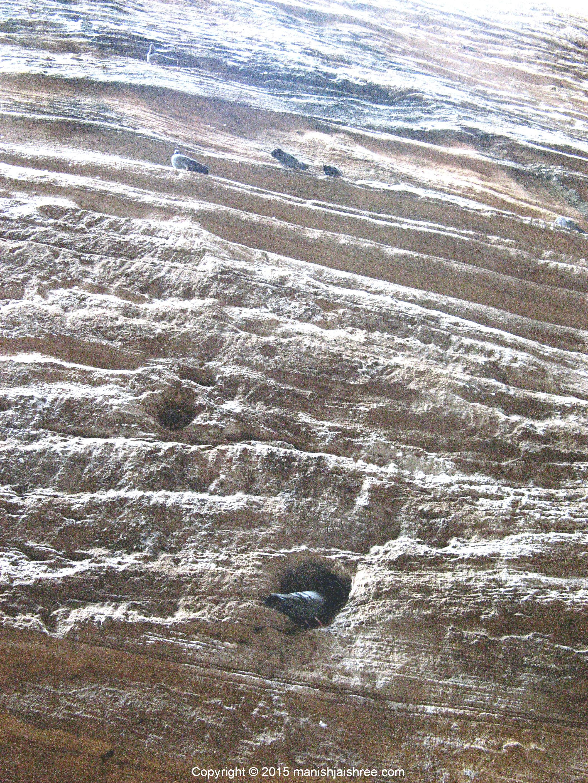 Stunning Rock-stratum of Adi-Kadi Vav, Uparkot, Junagarh