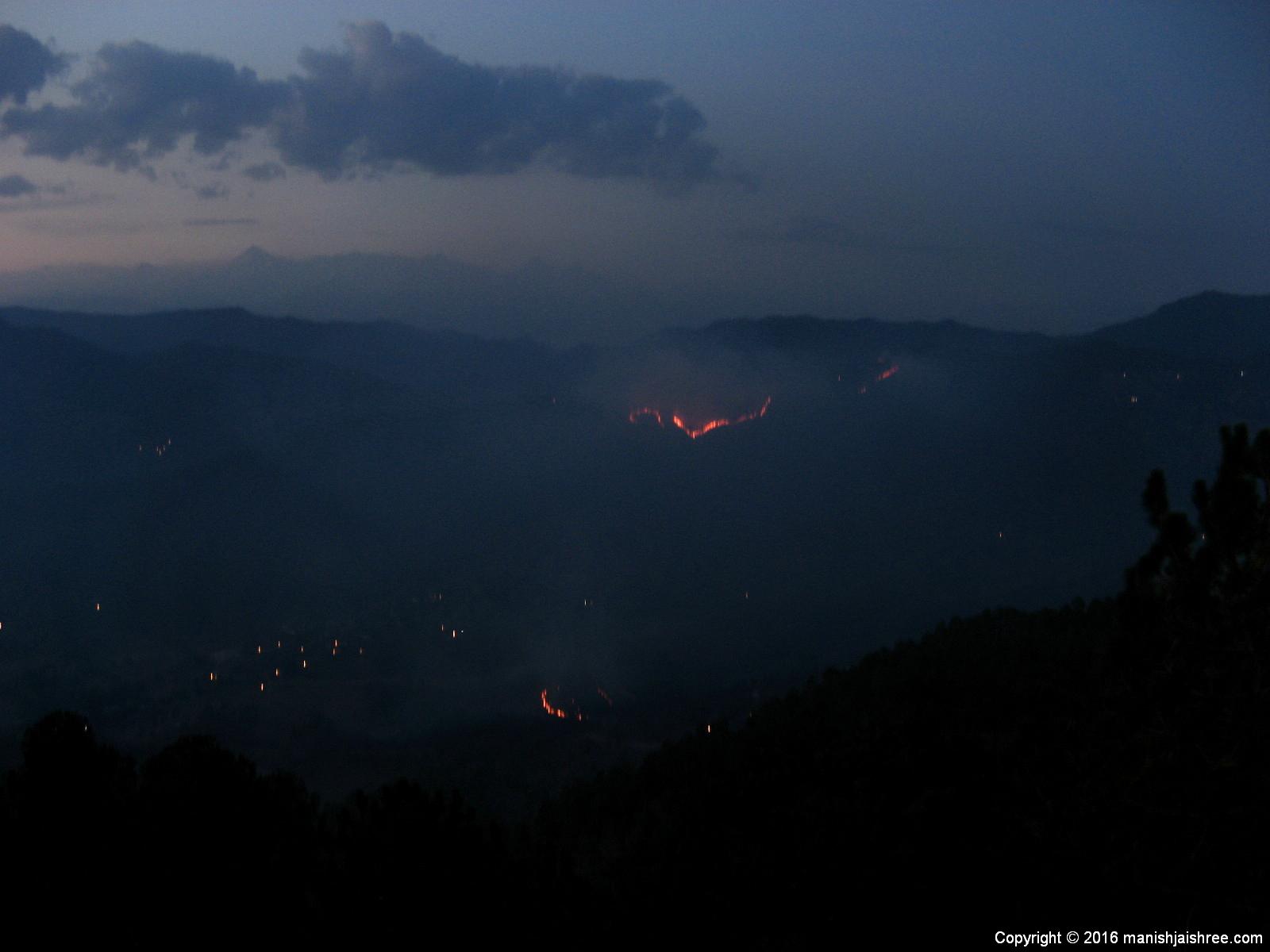 The Forest Fire, Binsar